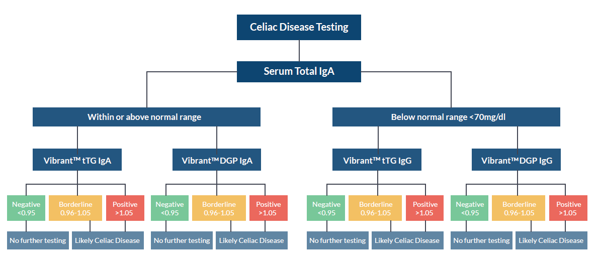 Celiac Disease Test Interpretation